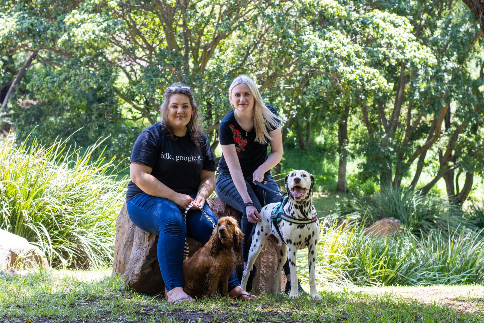 pet & family photography